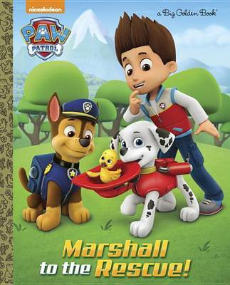 Marshall to the Rescue! (Paw Patrol) by Golden Books