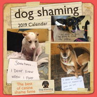 Dog Shaming 2019 Square Wall Calendar by Pascale Lemire