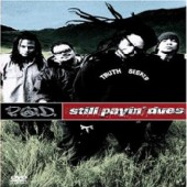 P.O.D - Still Payin Dues on DVD