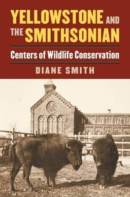 Yellowstone and the Smithsonian by Diane Smith image