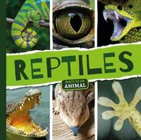 Reptiles by Emilie Dufresne