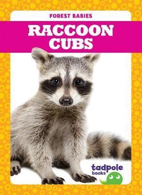 Raccoon Cubs by Genevieve Nilsen