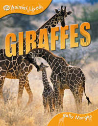 Giraffes by Sally Morgan image