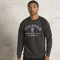 World of Warcraft Legion Dalaran University Alumni Raglan Men's Crew Neck Sweatshirt (Large)