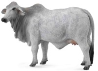 CollectA - Brahman Cow image