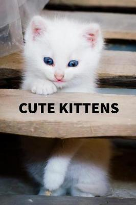 Cute Kittens by Lacw Publishing image