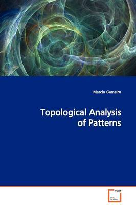 Topological Analysis of Patterns by Marcio Gameiro image