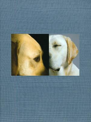 Puppies Behind Bars by Paul Solberg
