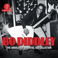 The Absolutely Essential by Bo Diddley