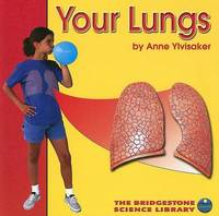 Your Lungs by Anne Ylvisaker