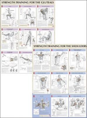 Strength Training Anatomy Poster Series by Frederic Delavier