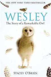 Wesley by Stacey O'Brien