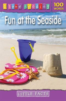 Little Facts 100 Words: Fun at the Seaside image