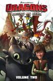 Dragons: Riders of Berk Collection: Vol. 2 by Simon Furman