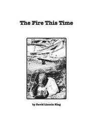 The Fire This Time by David Lincoln King image