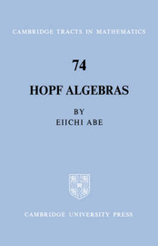 Cambridge Tracts in Mathematics: Series Number 74 by Eiiche Abe