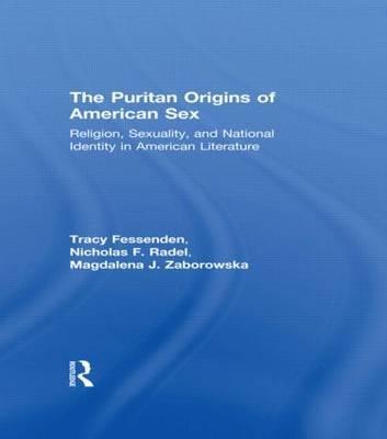 The Puritan Origins of American Sex image