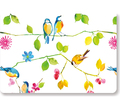 Watercolor Birds Note Cards (14 Cards/Envelopes)
