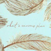 Alice Pleasance Wonderland: A5 Notebook - Feather