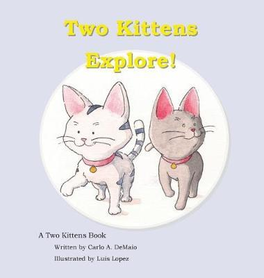 Two Kittens Explore by Carlo Demaio