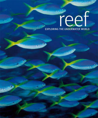 Reef: Exploring the Underwater World by Scubazoo