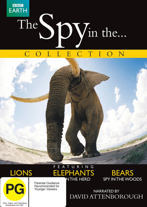 The Spy in the... Collection on DVD