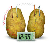 4M: Green Science Potato Clock