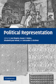 Political Representation image