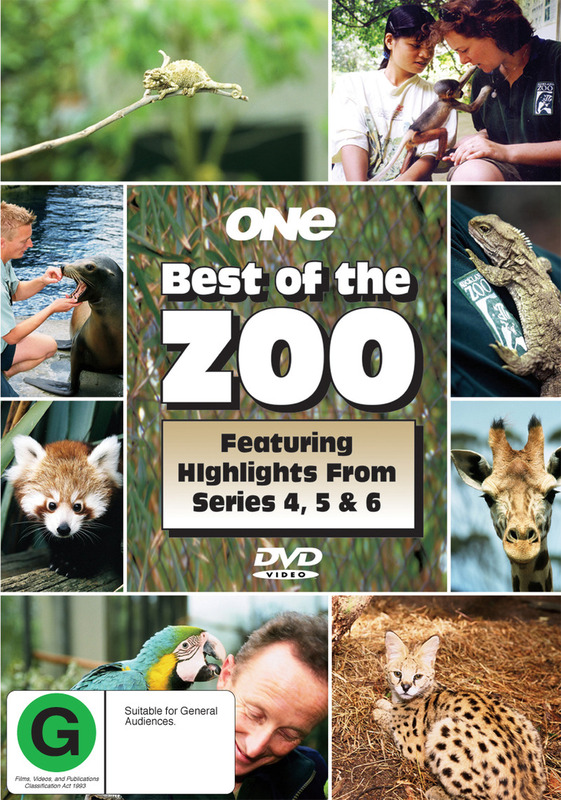 Best Of The Zoo - Highlights Series 4, 5, 6 on DVD