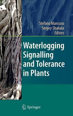 Waterlogging Signalling and Tolerance in Plants image