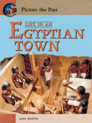 Life In An Egyptian Town by Jane Shuter
