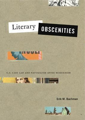 Literary Obscenities by Erik M. Bachman image