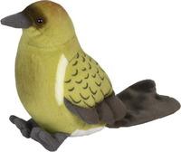 Bellbird (Korimako) w/Sound 15cm image