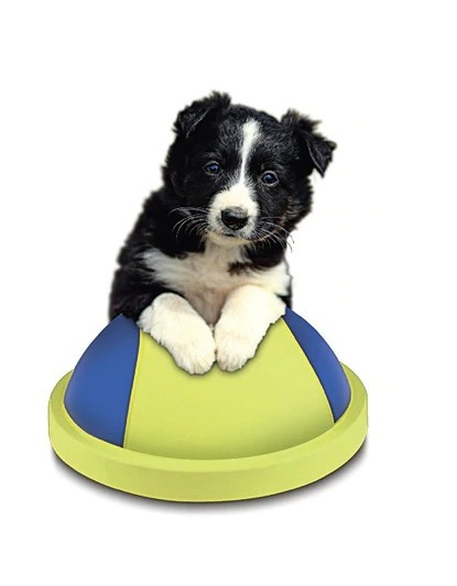 Slide & Glide Pet Ball