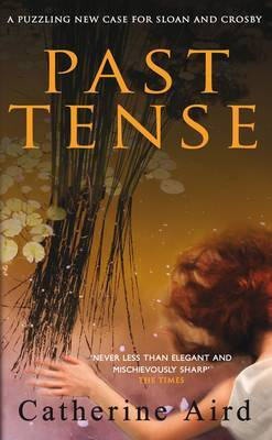 Past Tense by Catherine Aird image