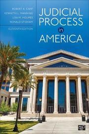 Judicial Process in America by Robert A Carp