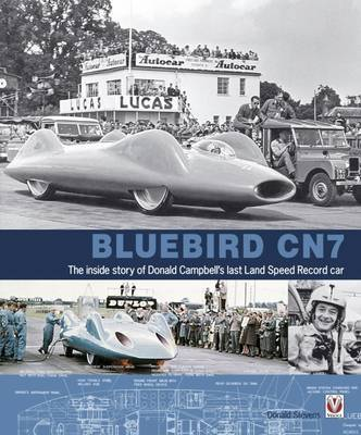 Bluebird CN7 by Donald Stevens image
