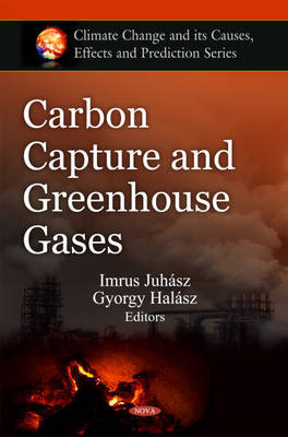 Carbon Capture & Greenhouse Gases image
