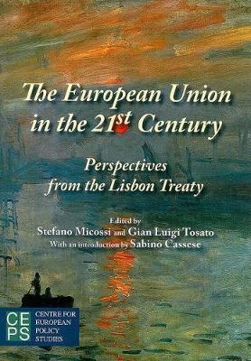 European Union in the 21st Century