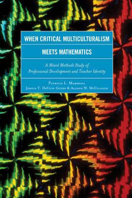 When Critical Multiculturalism Meets Mathematics by Jessica T. DeCuir-Gunby