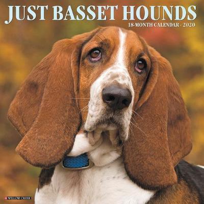 Just Basset Hounds 2020 Wall Calendar (Dog Breed Calendar) by Willow Creek Press