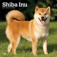 Shiba Inu 2019 Square Wall Calendar by Inc Browntrout Publishers image