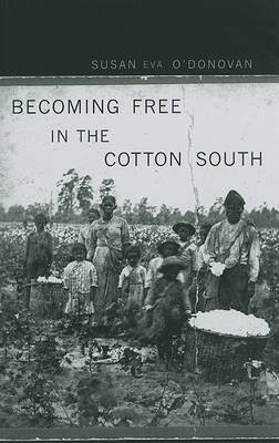 Becoming Free in the Cotton South by Susan Eva O'Donovan image