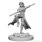 D&D Nolzurs Marvelous: Unpainted Minis - Human Female Monk