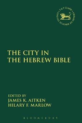 The City in the Hebrew Bible image
