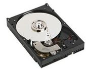 Western Digital WD Single 7200rpm 250GB 16MB Int SATA 2 Carviar Ra Raid Ed