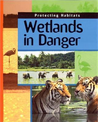 Wetlands In Danger by Andrew Campbell