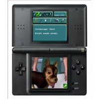 Real Adventures: Pet Vet for DS image
