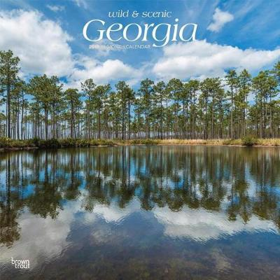 Georgia Wild & Scenic 2019 Square by Inc Browntrout Publishers