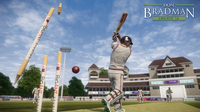 Don Bradman Cricket 14 Limited Edition for PC Games